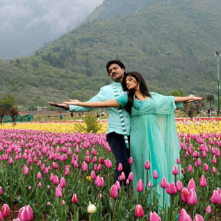 Kashmir Honeymoon Package